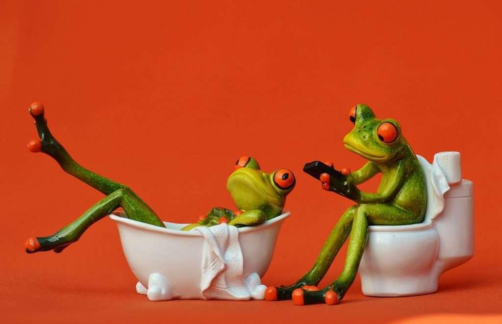 bathtub, loo, frogs-1248940.jpg