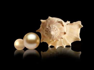 moti-pearl-astrology